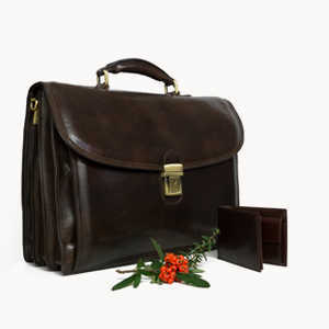 Discover the Business Collection of Genuine Leather Bags